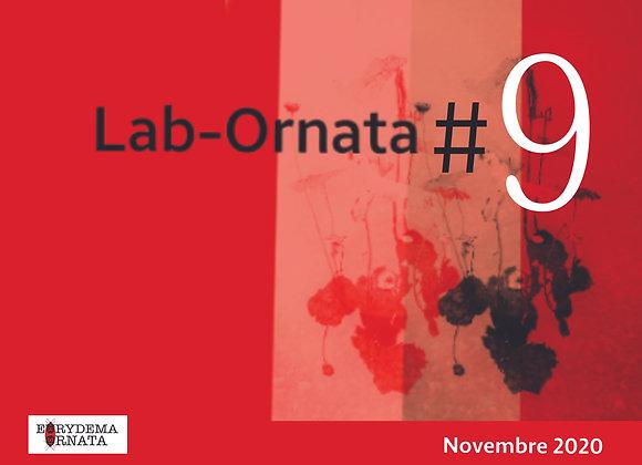 Lab-Ornata #9   (à télécharger)