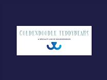 Goldendoodle Breeder