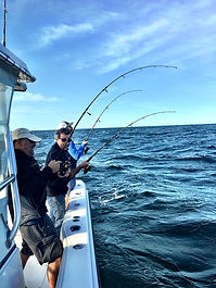 Limit of striped bass from Cape Tip'n Charter Fishing trip