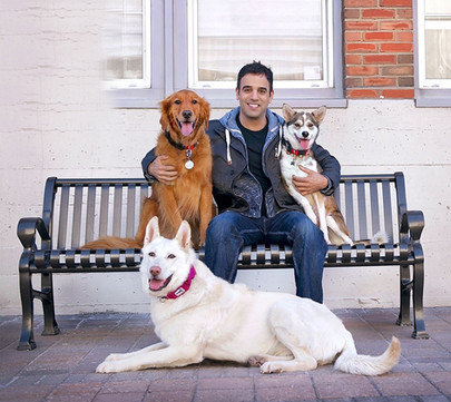 Rodney Habib on a park bench with his dogs