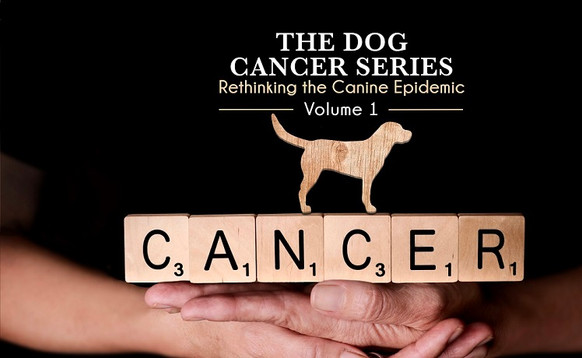The Dog Cancer Series Cover