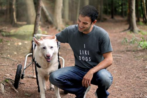 Rodney Habib I Like Dogs