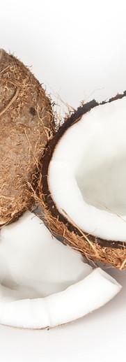 coconut small.jpg