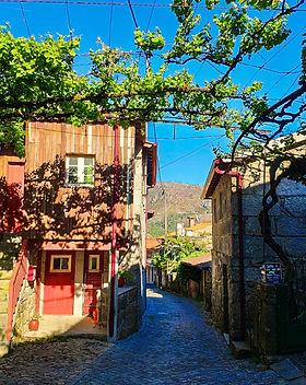 Активный отдых в Португалии-lusasync.jpg