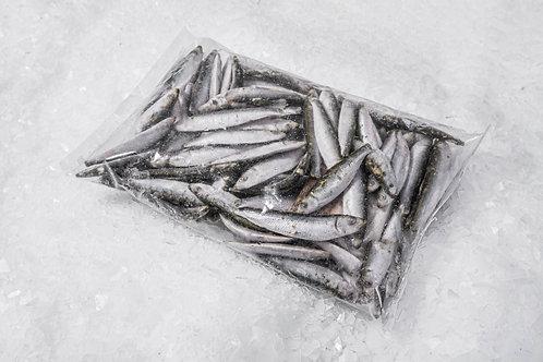 Frozen Whole Sardines