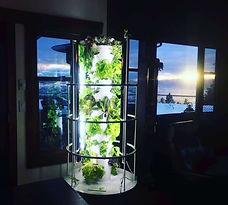 Indoor Vertical Tower Garden.jpg