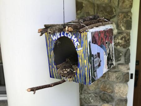 Bird Watch Week w/ MRASP LFH Blog 05