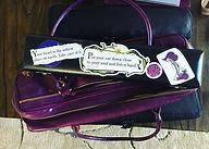 jen's flute case.jpeg