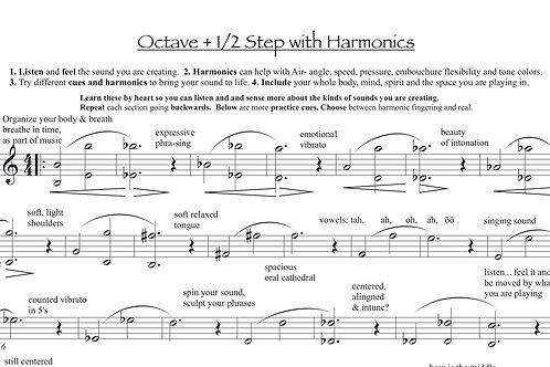 Top 12 Tone Exercises
