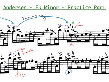 TX All State Flute Etudes 2021- Practice Ideas