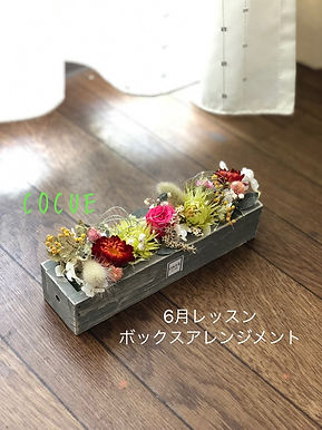 IMG_0291.JPG.jpg