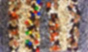 IMG_6888_edited_edited.jpg