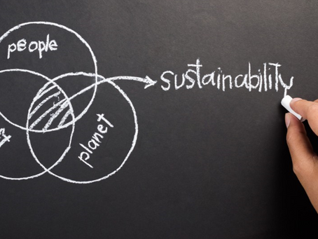 Why all businesses should embrace sustainability