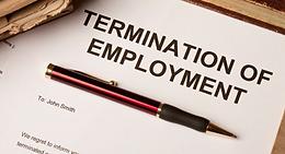 Dismissal During Probation Period
