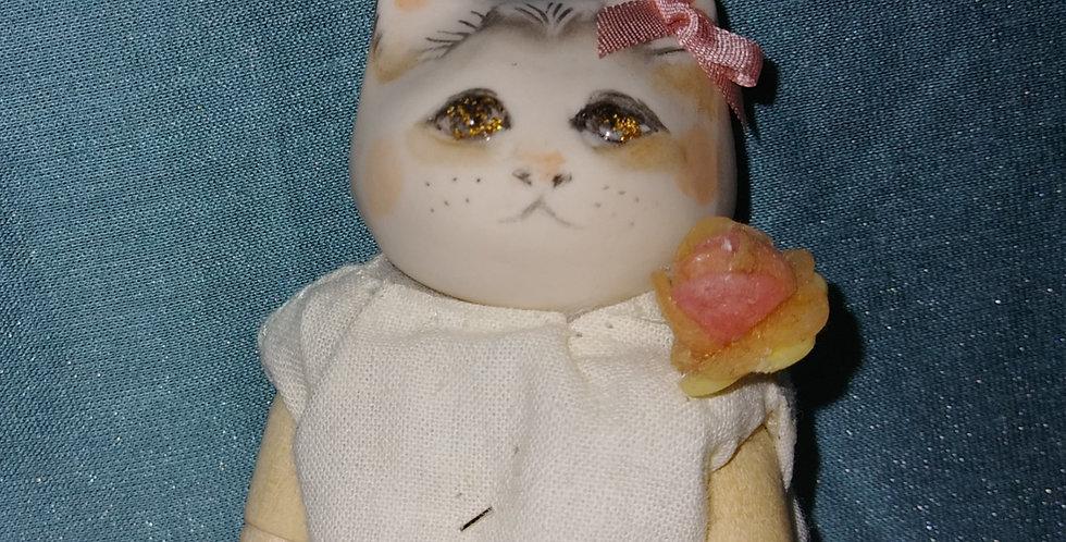 ネコのシルク