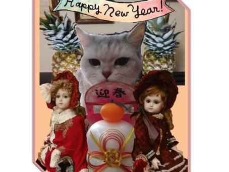謹賀新年本年もよろしくお願いいたします♪