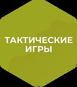 Тактика_гексагон.png