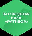 База_гексагон.png