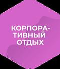 Корпораты_гексагон.png
