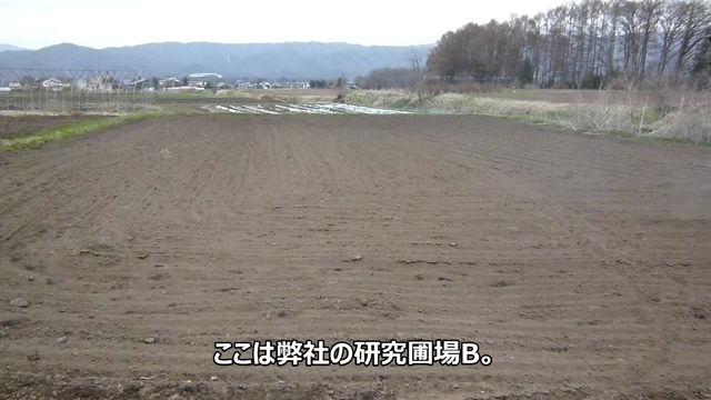 土作り その2