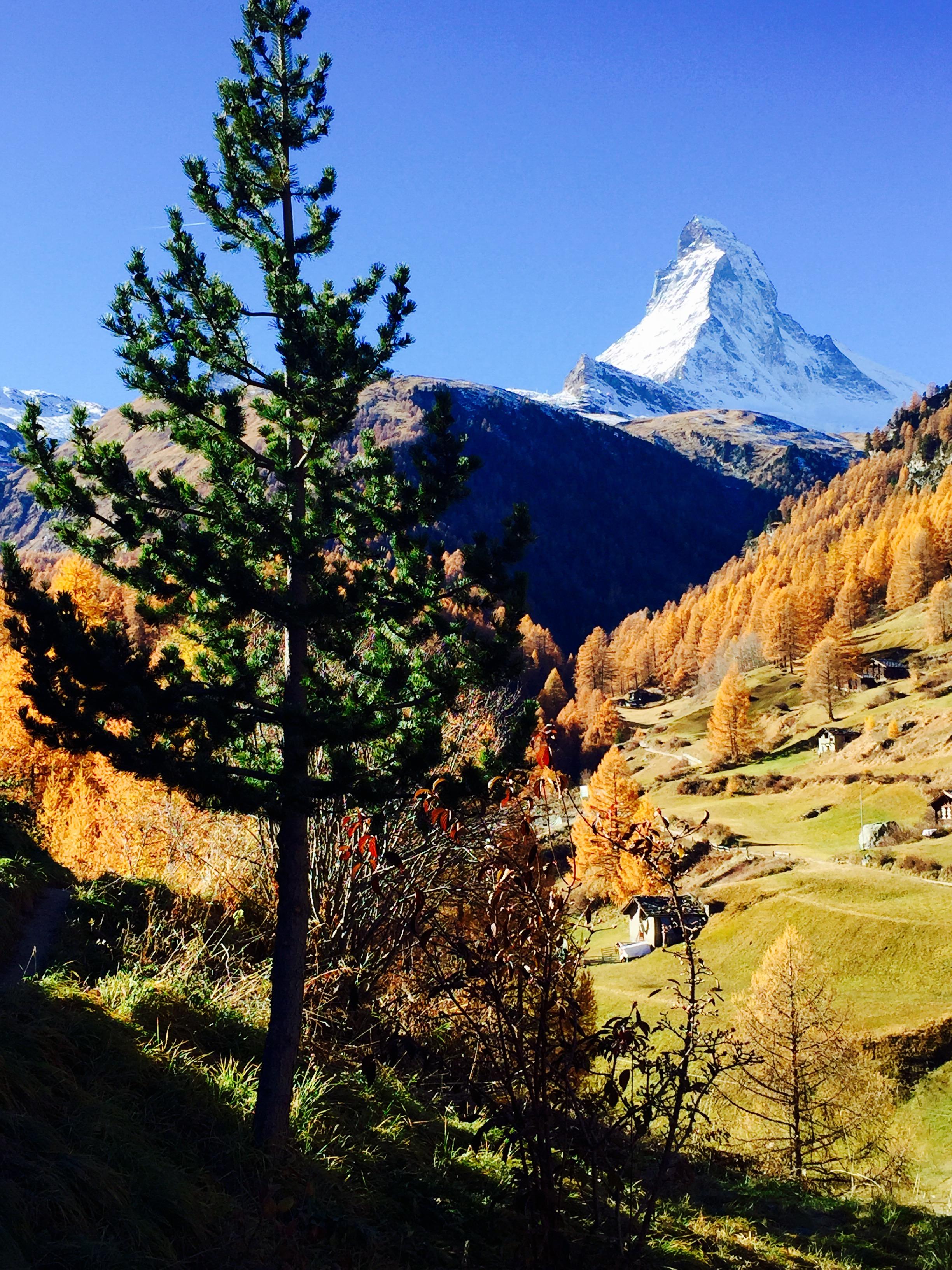 Restaurant Waldhaus Zermatt