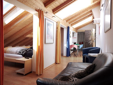 Artist Apartments Zermatt 3 Bett Apartment