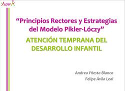 Principios Rectores_edited