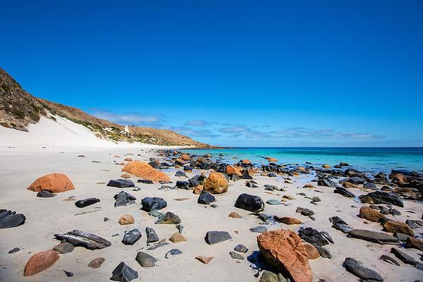 Cape Jervis Beach.jpg