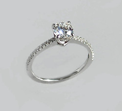 The Delicate Engagement Ring
