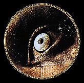 eyegraphicweb.png