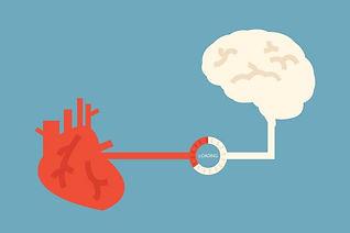 brain-and-heart-624x416.jpg