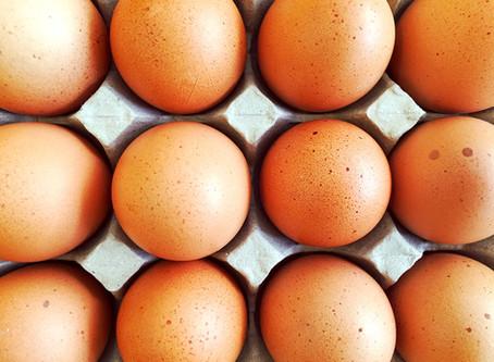 匡正網路謠傳 雞蛋斑點是自然現象,不影響品質,也不能作為判定感染沙門氏菌