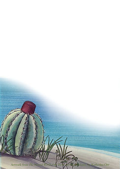 notecard.Turkshead.cactus.jpg