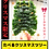 Thumbnail: 【クリスマス】食べるクリスマスツリー