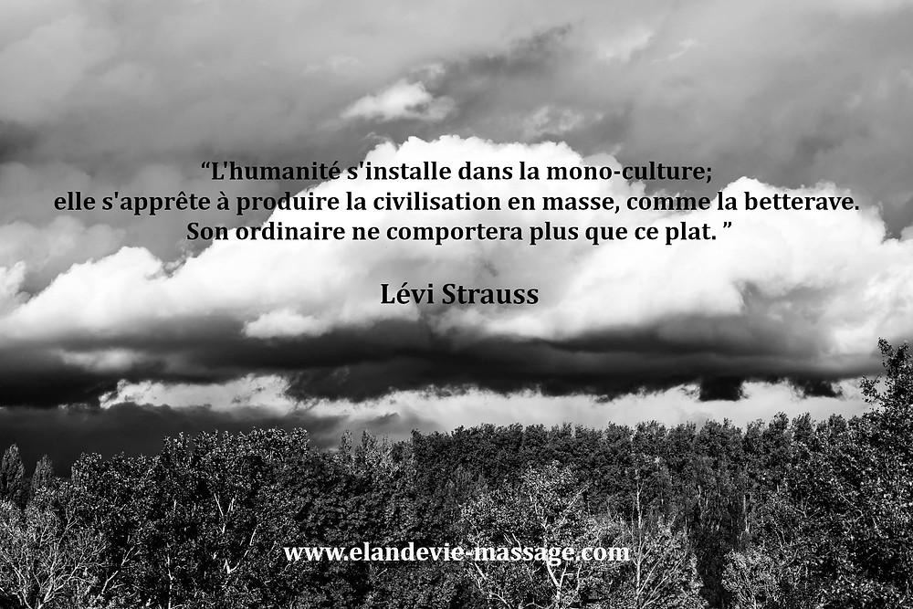 Citation lévi strauss - Massage Les Angles 30133 - Gard - Massage Vaucluse