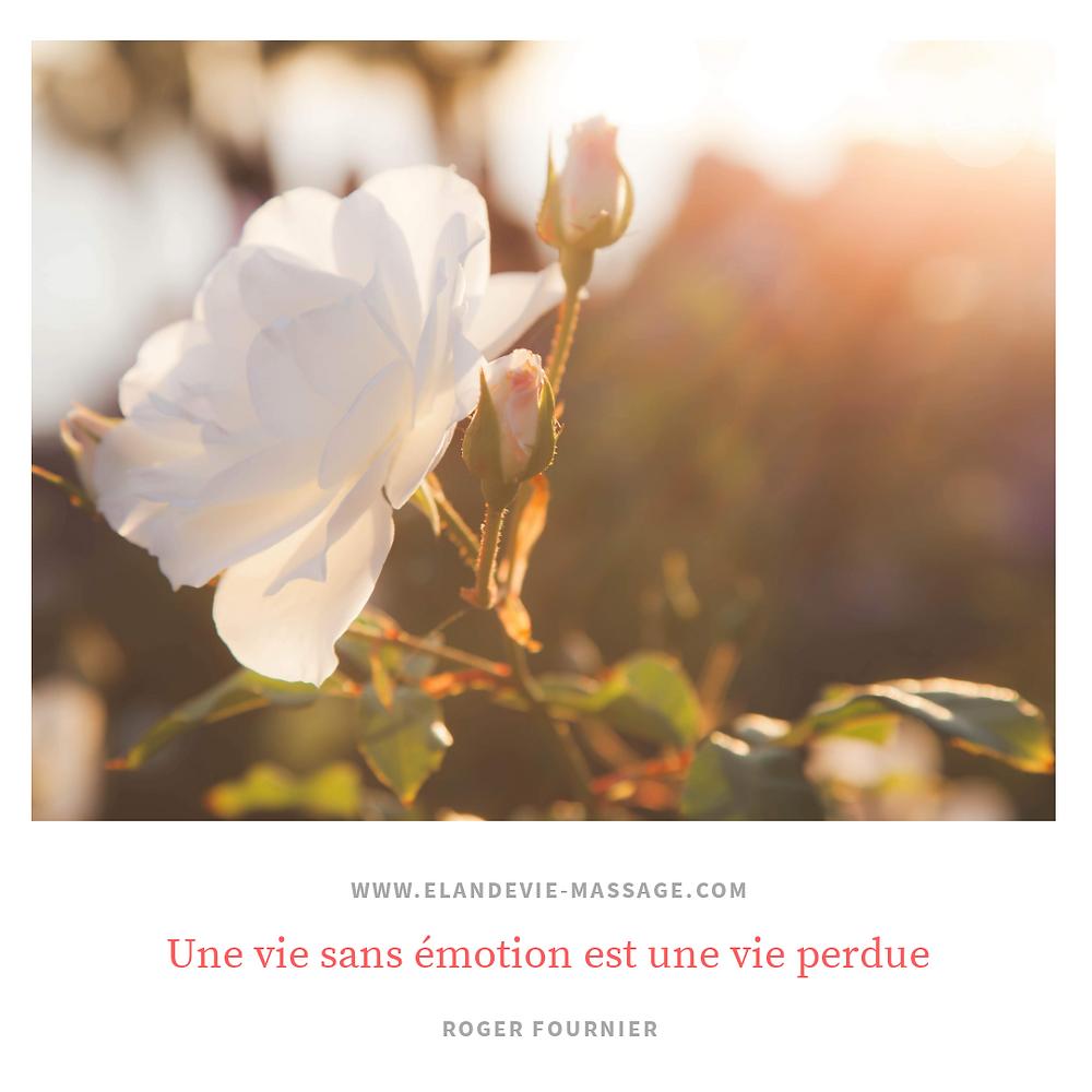 citation vie - massage avignon - massage les angles 30 - Villeneuve lès Avignon