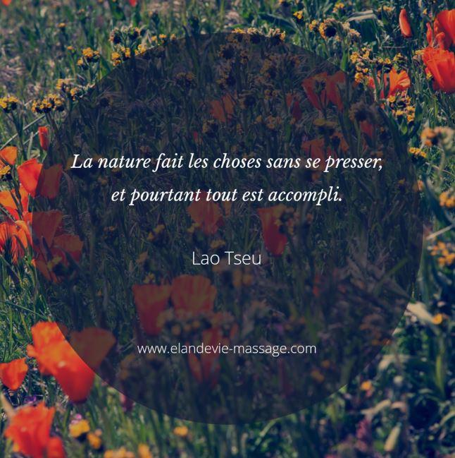citation Lao Tseu - Nature fait les choses sans se presser - Massage Avignon