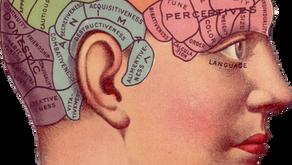 Cerveau droit/cerveau gauche, la fin d'un mythe