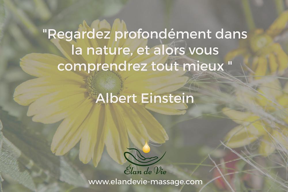 Regardez profondément dans la nature, et alors vous comprendrez tout mieux, Albert Einstein. Elan de vie Massage Avignon