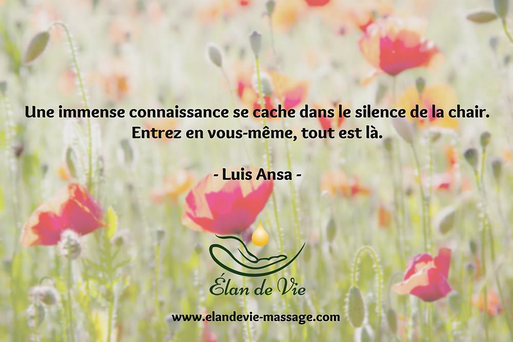 Citation Luis Ansa Une immense connaissance se cache dans le silence de la chair. Entrez en vous-même, tout est là.
