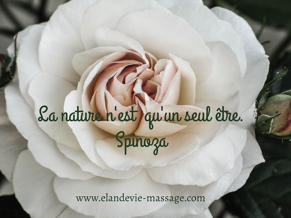 Citation nature Spinoza. Massage Les Angles 30 - Massage Gard - Massage Vaucluse
