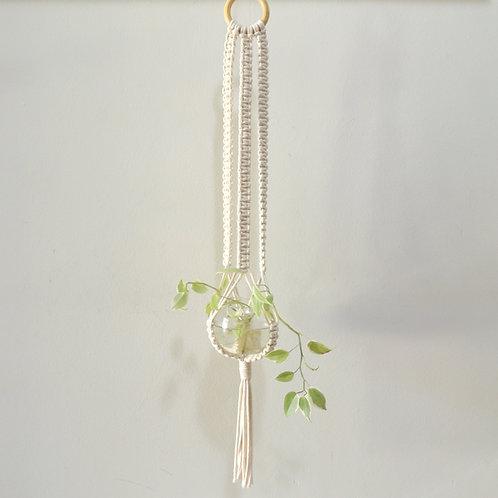 hanger Carmen