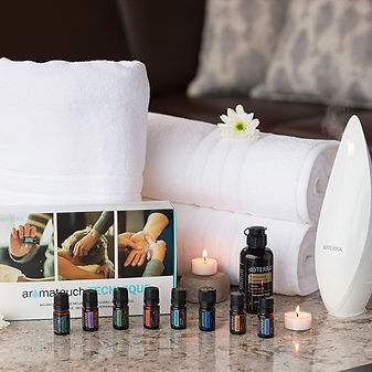 at-technique-kit-towles-diffuser.jpg