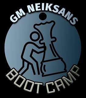 neiksans bootcamp logo.png