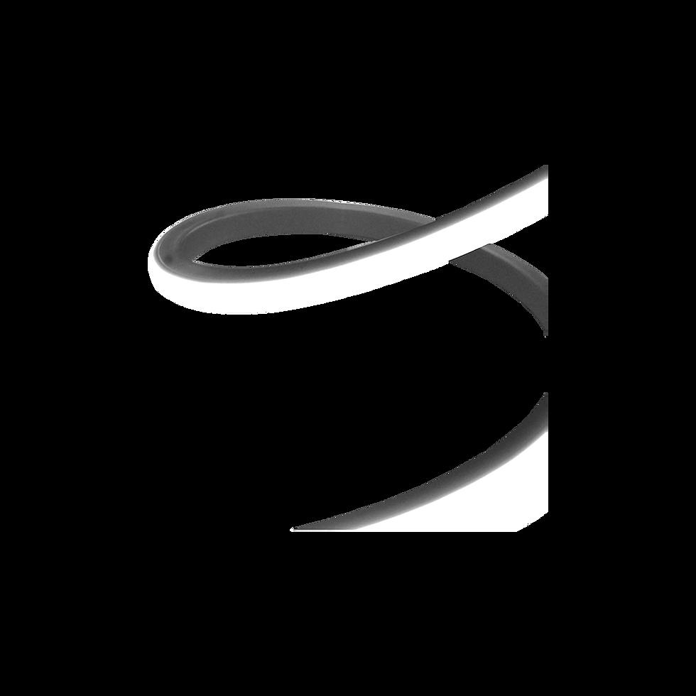 Flexneo III