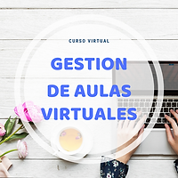 curso virtual GAV.png