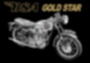 TEE WEB IMAGE GOLD STAR GAP WORD ALL GOL