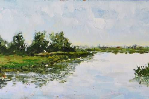 Dutch landscapes 21