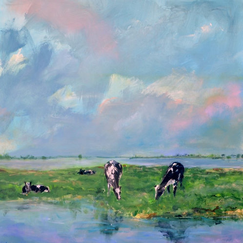 Cows in the polder