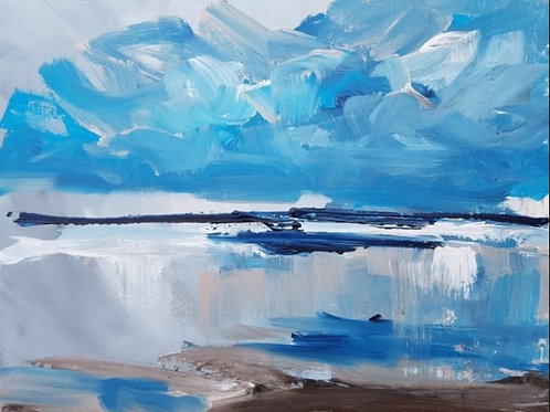North sea study 1